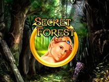 Secret Forest играть на деньги в казино Эльдорадо